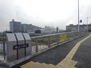 明石川 (7)