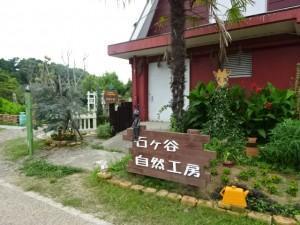 石ケ谷公園 (6)