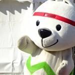 【紀の国わかやま国体ゆるキャラ】きいちゃんに会いに和歌山競輪場に行ってきた!