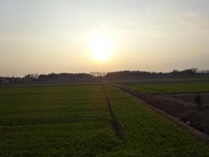 ビワイチ(琵琶湖一周)1日目 (17)