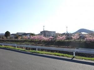 大阪奈良ポタリング (20)