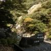 【屋久島】大川の滝に行ってみた!