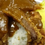 【加古川名物】うどんやのかつめしを食べてみた!
