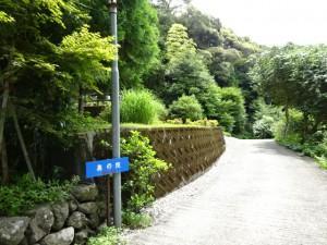 住吉荘から善楽寺 (20)
