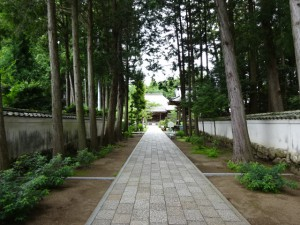 住吉荘から善楽寺 (30)