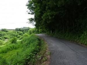 住吉荘から善楽寺 (35)