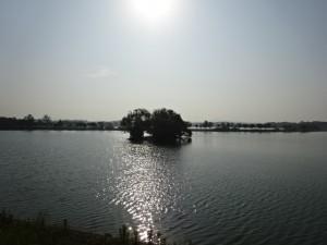 加古大池 (2)