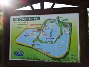 加古大池 (3)