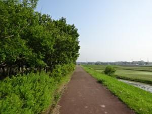 加古大池 (9)