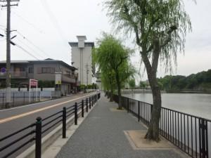 名古屋城一周 (5)