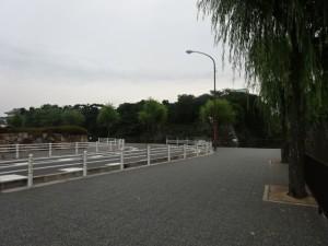 名古屋城一周 (8)