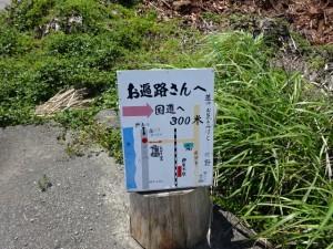 奈半利駅から住吉荘 (17)