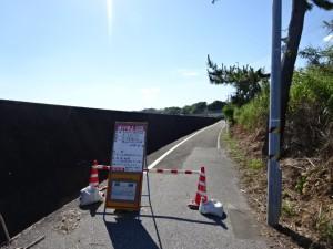 奈半利駅から住吉荘 (21)