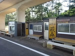 奈半利駅から住吉荘 (25)