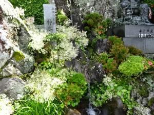 奈半利駅から住吉荘 (5)