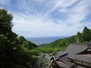 奈半利駅から住吉荘 (8)