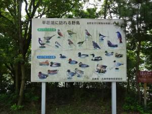 平荘湖 (7)
