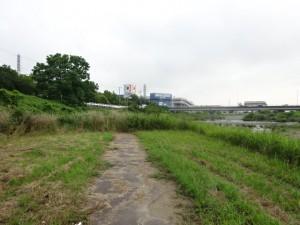 明石川 (10)