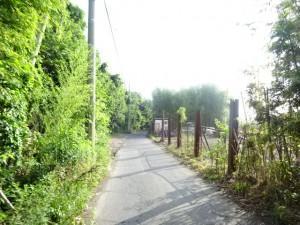 明石川 (15)