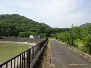 権現ダム (13)