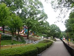 石ケ谷公園 (12)
