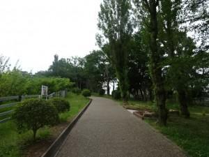 石ケ谷公園 (3)