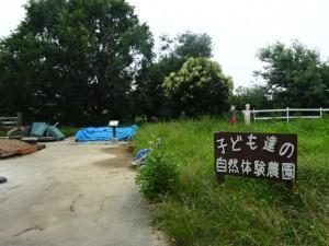 石ケ谷公園 (5)