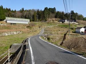 楢井ダム (12)
