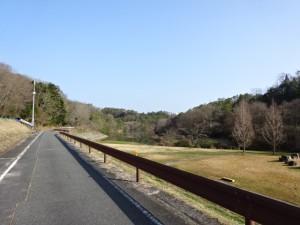 楢井ダム (13)
