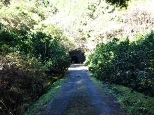 熊井トンネル (19)