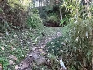 熊井トンネル (6)