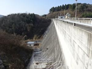 竹谷ダム (14)