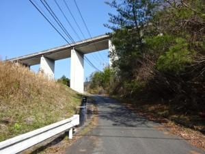 竹谷ダム (3)