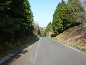 竹谷ダム (5)
