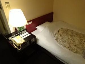 高知さくらホテル (3)