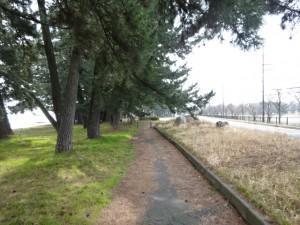 ビワイチ(琵琶湖一周)2日目 (14)