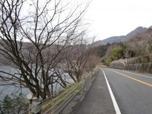 ビワイチ(琵琶湖一周)2日目 (5)