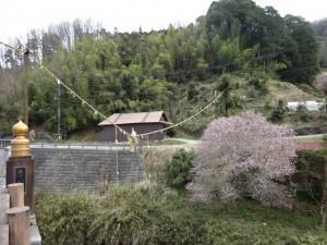 明日香村観光 (5)