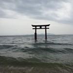琵琶湖の白鬚神社に行ってみた!