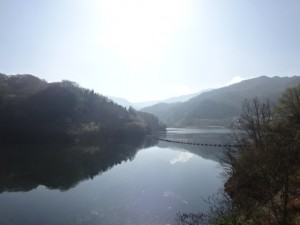 前山ダム ダムカード (9)