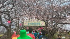 幸手マラソン (3)