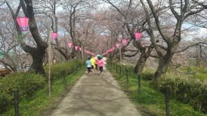 幸手マラソン (4)