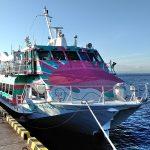 【東京⇔大島】東海汽船の高速ジェット船に乗ってみた!